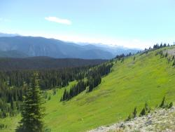 Heather Meadows Trail