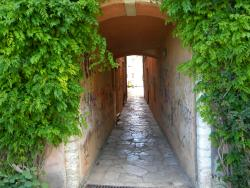 Ichnos - Tours & Excursions in Corfu