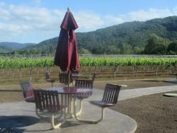 Sycamore Creek Vineyards