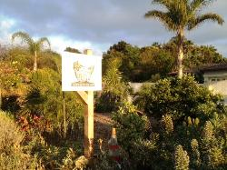 Coral Tree Farm