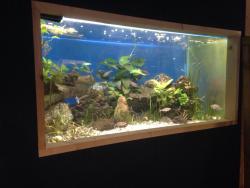 Aquarium tropical des Pyrenees