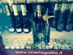 Vineria Gallia