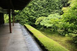 สวนเคชุนอิน