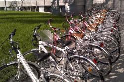 Bike Rental Bologna
