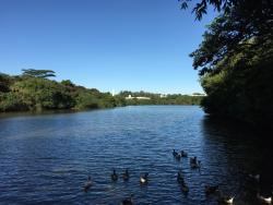 Parque Ecologico Prof. Hermogenes de Freitas