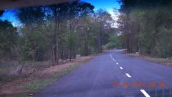 Pakhal Wildlife Sanctuary