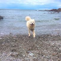 Grunta Beach