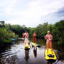 Kostal Paddle Florida