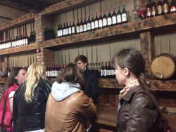 Tasting Room of Gudautsky Winery
