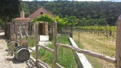 La Cruz de Comal Wines, Ltd.