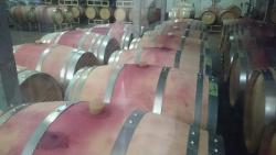 Manns Wine Komoro Winery