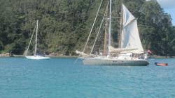 group of sail boats anchored