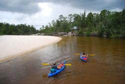 Blackwater Canoe Rental