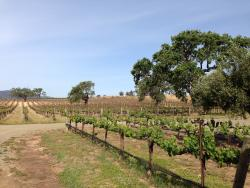 Stagecoach Co. Wine Tours