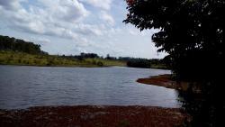 Lago das Palmeiras