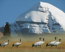 Tibet Highland Tours-Day Tour