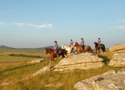 Περιηγήσεις ιππασίας