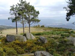 Serra do Ladário