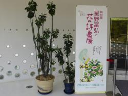 Road Station Tomi Hiromi Art Museum