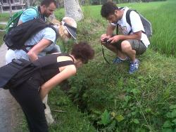 Bali Green Walks (Nature Herb Walk)