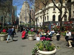 Greeley Square Park