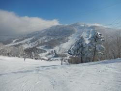 One of the many ski runs