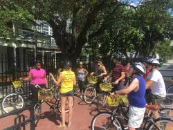 Bumble Bee Bike Tours