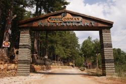 Park Orman Restaurant