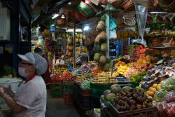 Bogota Foodie Food Safari Tours