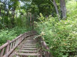 Yamabukino Sato Historic Park