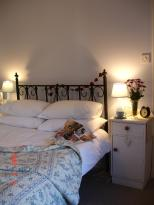 Basset Cottage B&B