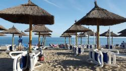 Luna Beach Bar & Chiringuito