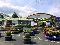 Albrighton Garden Centre