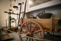 Bartolomei Frantoio Museo dell'Olio