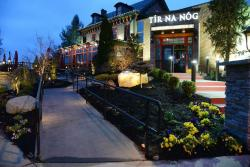 Tir Na Nog Kitchen & Irish Pub