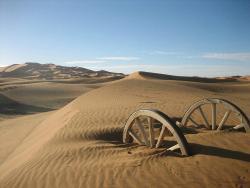 Sahara Exploring Expedition Day Tours
