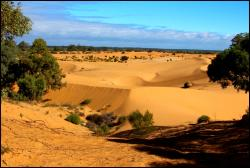 Perry Sand Hills