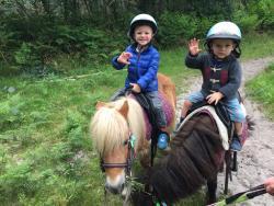 Balade en poneys