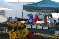 Downtown Wildwood Farmers Market