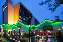 Jimmy's Island Grill & Iguana Bar