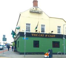 The Cat & Cage
