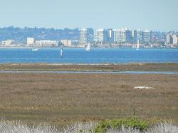 Beautiful bay view from historical site today.
