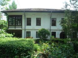 Theodor Pallady Museum