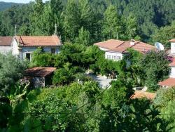 Quinta de Ribas