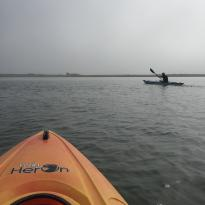 Chatham Kayak Company - Guided Tours