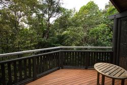 private deck surrounded by trees. No real view due to them, but the birds were nice
