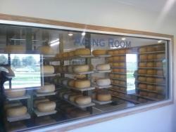 Frisian Farms Cheese House