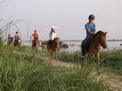 Areyksat Equestrian Trail Rides