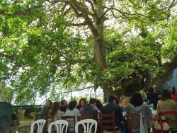 Tavern Agia Paraskevi