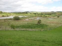 Marfield Wetlands Nature Reserve